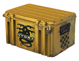 Operation Hydra Case